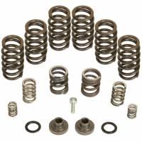 Engine Parts - Valvetrain Parts - BD Diesel - BD Diesel Governor Spring Kit, 4000rpm - 1994-1998 Dodge 12-valve/P7100 Pump 1040185